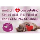 Cestino Solidale per Cani...