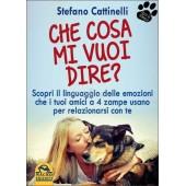 Che Cosa Mi Vuoi Dire di Stefano Cattinelli
