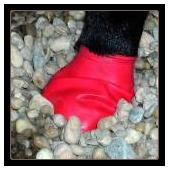 Pawz Dog Boots gomma Taglia S - Color Rosso