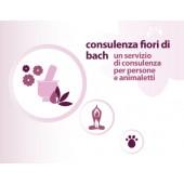 consulenza gratuita per fiori di bach cane gatto persone