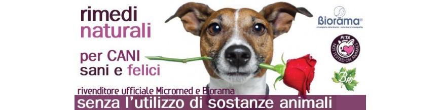 Integratori naturali e vegan per cani